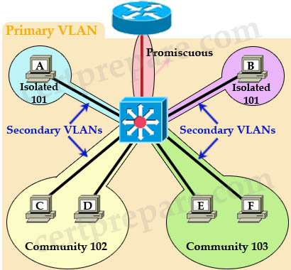 PVLAN_Primary_VLAN_Secondary_VLAN.jpg